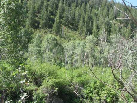 6 S Birch Creek Dr - Photo 2