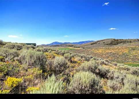 6633 Golden Bear Loop West #2-44 - Photo 28