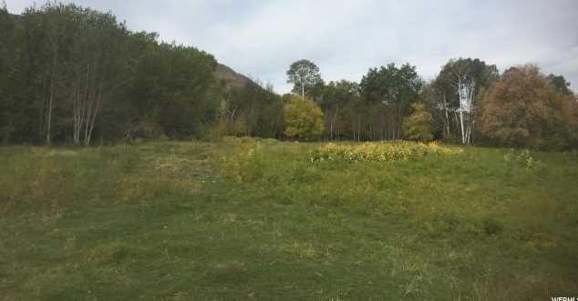 7031 N Dry Fork Settlement Rd - Photo 32