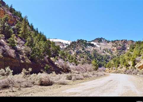 9890 Spring Canyon Rd - Photo 10