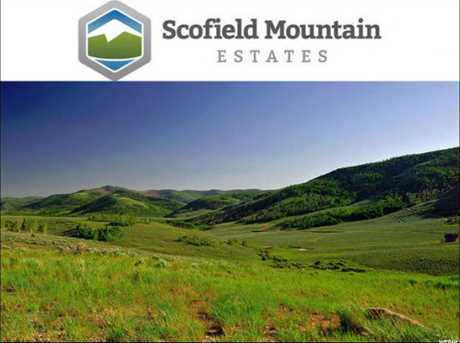 32 Scofield Mountain Estates Ests - Photo 12
