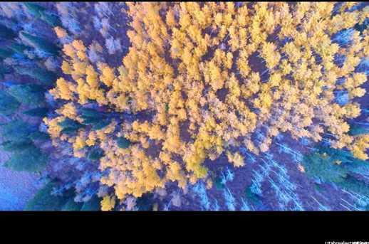 5793 N Powder Mountain Rd E - Photo 16