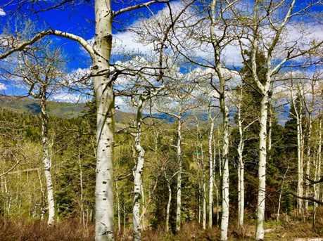 2146 Pine Loop Rd - Photo 26