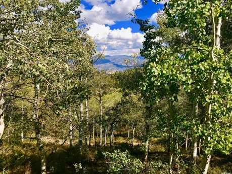 2146 Pine Loop Rd - Photo 14