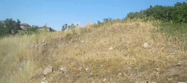 15343 S Traverse Ridge Rd E - Photo 14