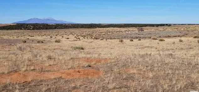3467 S Elk Ridge Dr. - Photo 8