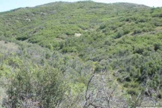 52 Water Hollow - Photo 4