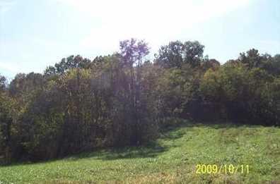 7 Timber Ridge - Photo 1