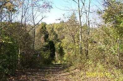 25 Timber Ridge - Photo 1