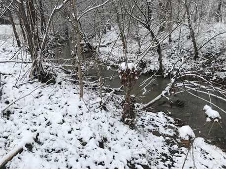 Cedar Creek Rd. - Photo 6