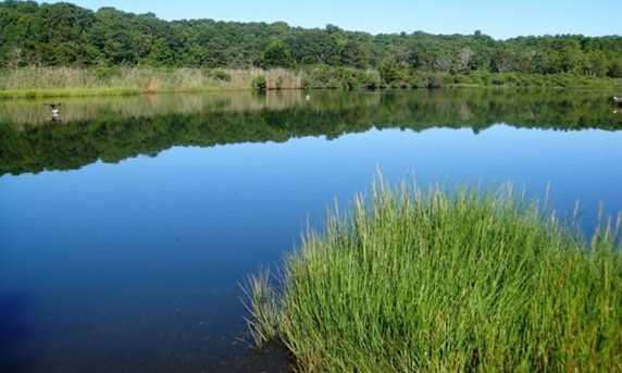 17 Green Pond Road - Photo 1