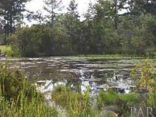 9758 Nichols Lake Rd - Photo 6