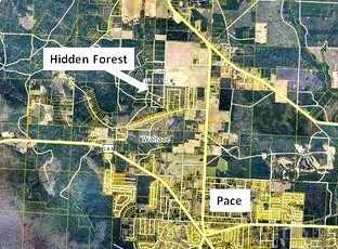 Vacantland Hidden Forest Trail - Photo 18