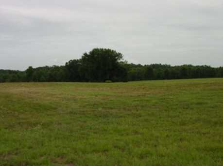 Lot 12 Creekside Hwy 271 Tbd Jacobin Creek Dr - Photo 6