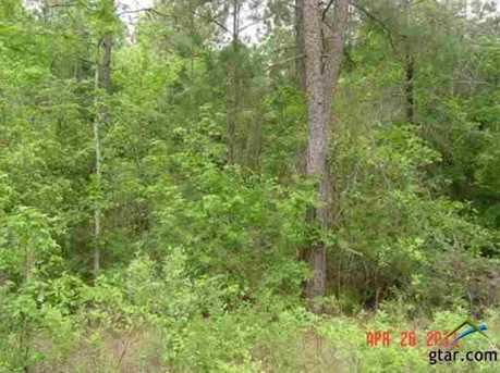 Tbd Holly Road 34 Acres - Photo 6