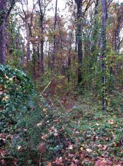Hickory Hill Land - Photo 2