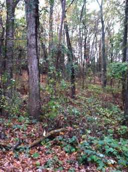 Hickory Hill Land - Photo 10