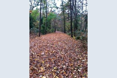 Hickory Hill Land - Photo 1
