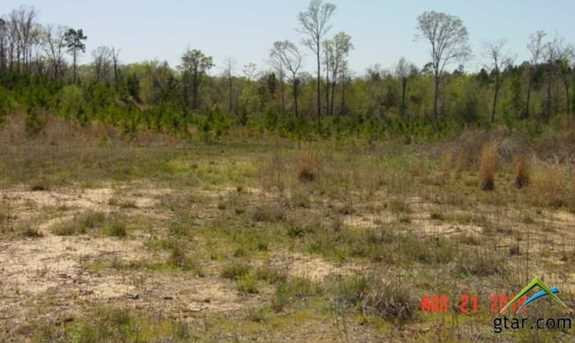 Tbd 31 Acres Saunders Road - Photo 8