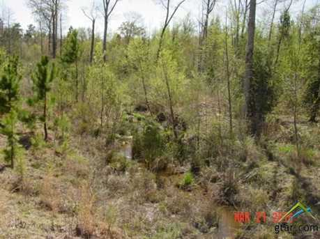 Tbd 31 Acres Saunders Road - Photo 12