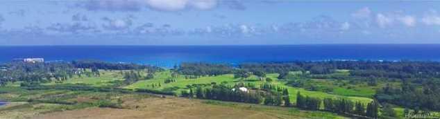 Lot 1193 Kamehameha Highway - Photo 1