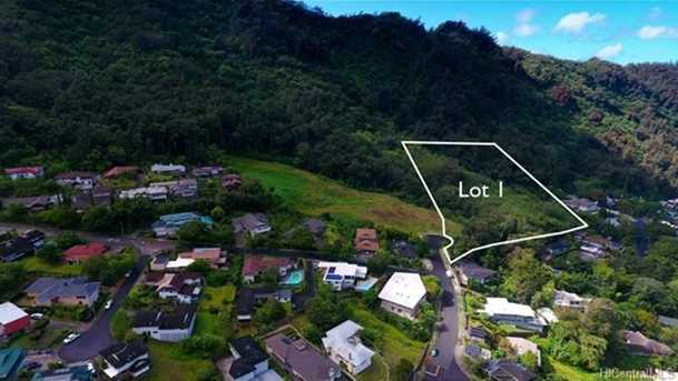 Lot 1 Puu Paka Drive - Photo 1