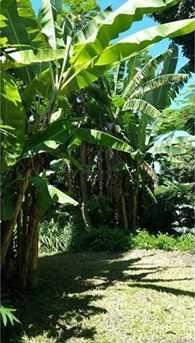 82-6079 Hawaii Belt Road - Photo 22