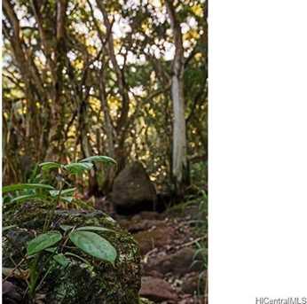 59-178 D1 Kamehameha Highway - Photo 16