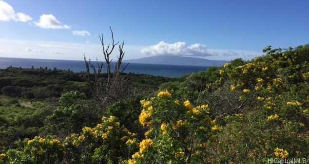 8511 Kamehameha V Highway - Photo 10