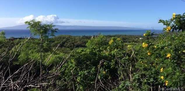 8511 Kamehameha V Highway - Photo 4