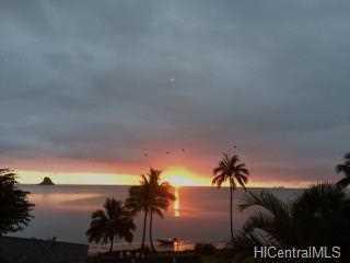 48-471 Kamehameha Highway #C1 - Photo 2