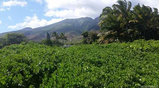 7268 Kamehameha V Highway - Photo 6