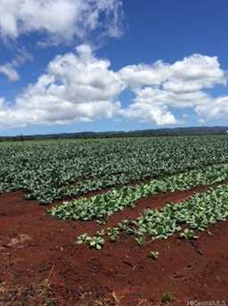 64-1550 Kamehameha Highway #Puuwai 7 - Photo 10