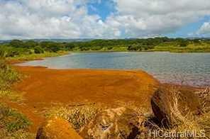 64-1550 Kamehameha Hwy #Kaulana 9 - Photo 4