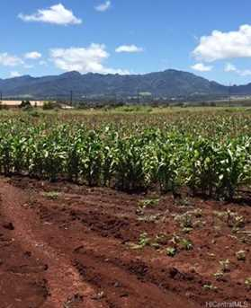 64-1550 Kamehameha Highway #Puuwai 11 - Photo 6