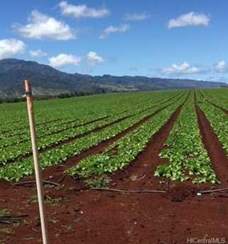 64-1550 Kamehameha Highway #Kaulana 3 - Photo 8