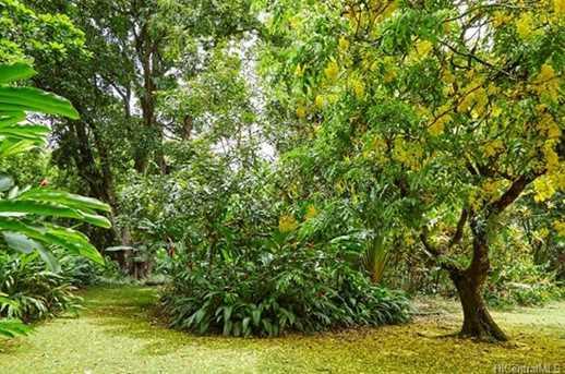 4157 Nuuanu Pali Drive - Photo 8