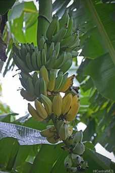 1419 Puanakau Street - Photo 22
