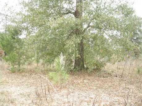 Lot A N Hwy 331 - 5 Acres N - Photo 2