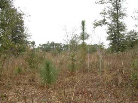 Lot B N Hwy 331 - 5 16 Acres N - Photo 2