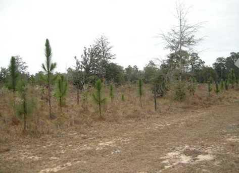 Lot N Hwy 331 - 24 Acres N - Photo 2
