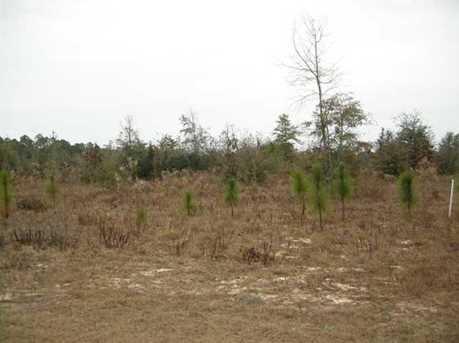 Lot N Hwy 331 - 24 Acres N - Photo 1
