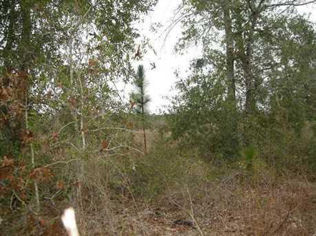 Lot N Hwy 331 - 24 Acres N - Photo 10