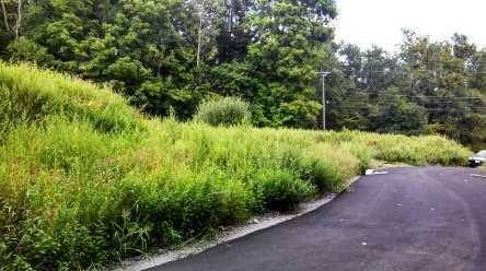 58 Stony Hill Road - Photo 4