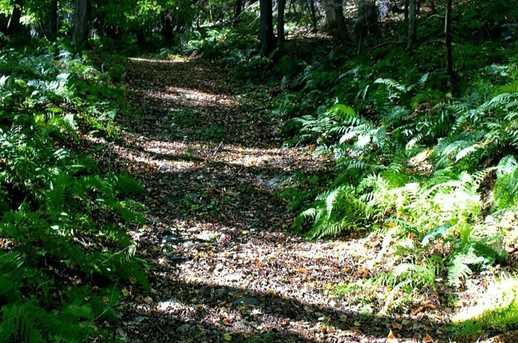 0 Cedar Hill Road - Photo 2