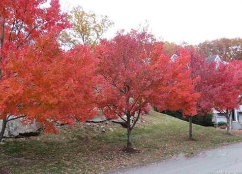 1805 Cypress Drive - Photo 26