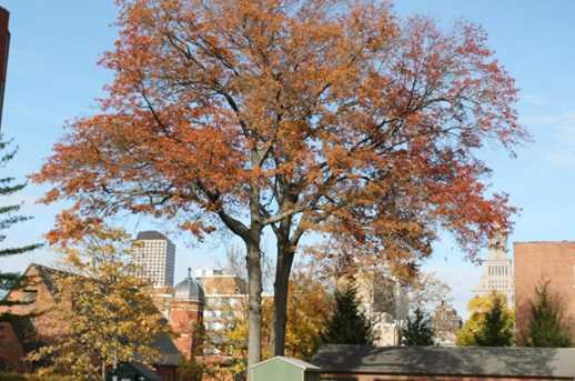 27 Charter Oak Place #C - Photo 4
