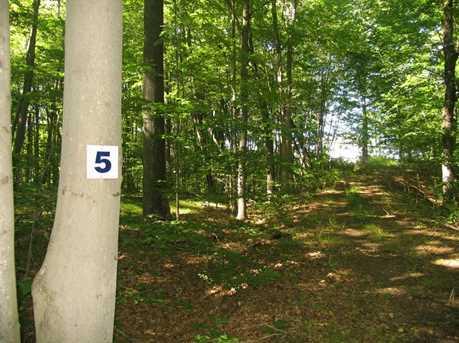 Lot 4,5 Weatherly Trail - Photo 6