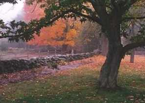 21 Cranberry Meadow Ln - Photo 2