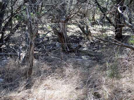 1141 Hidden Forest - Photo 6